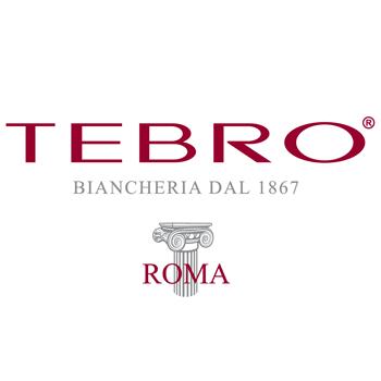 Logo Tebro-01